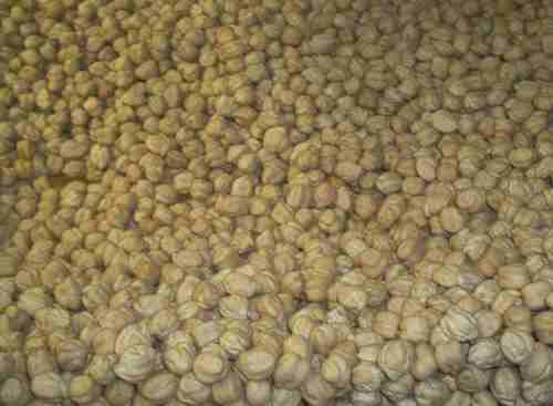 Ceci beans (loose, dry) 1 lb.