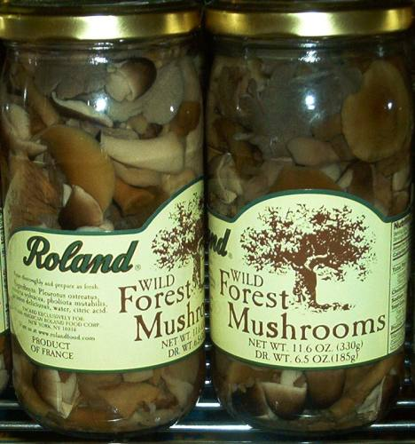 Roland Wild Forest Mushrooms